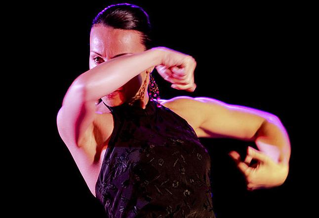 Ballarina de flamenco